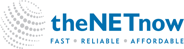 The Net Now - Logo